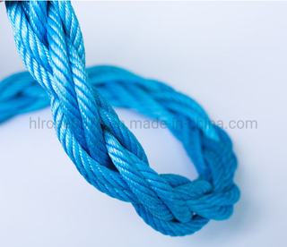 3/4/6/8 Strands PP Combination Compound Steel Wire Rope + FC/Iwrc for Marine
