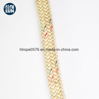 Dynamic Hot Sell Polyamide/Nylon Mooring Rope