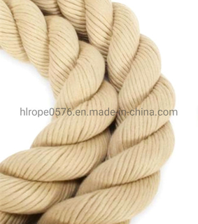Anti-UV Polyester Rope Sailing Rope for Marine